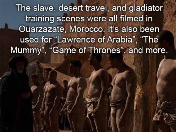 gladiator-facts (7)