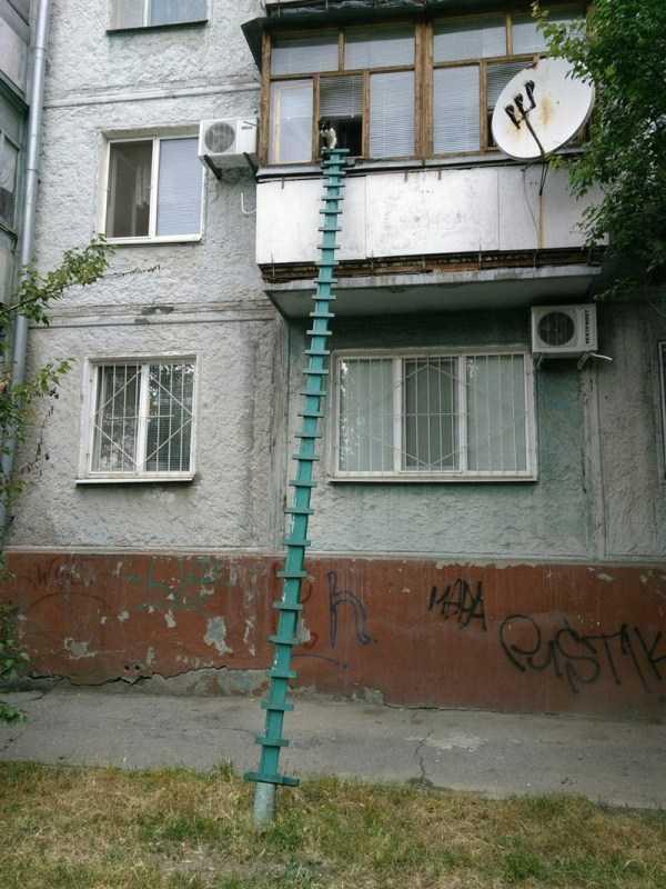 russia-crazy-pics (54)
