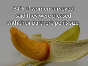 sex-facts (15)