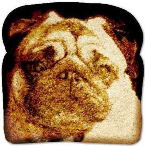 toast-art (28)