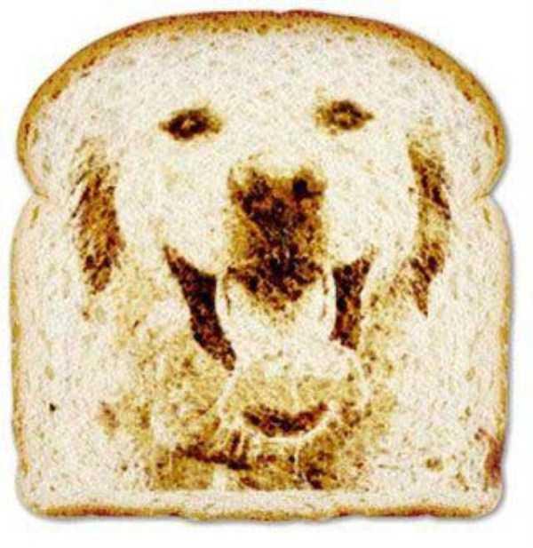 toast-art (8)