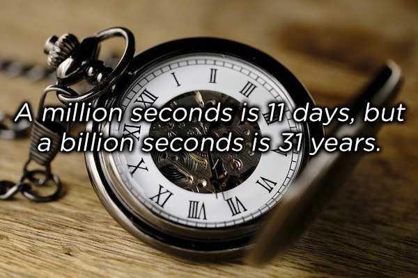 weird-facts (7)