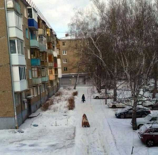 wtf-russia-photos (13)