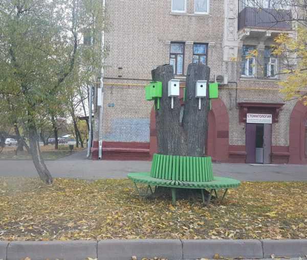 crazy-russia-pics (15)