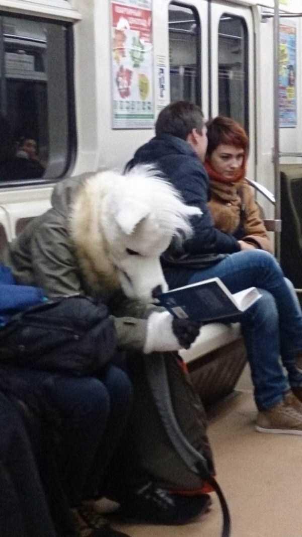 crazy-subway (27)