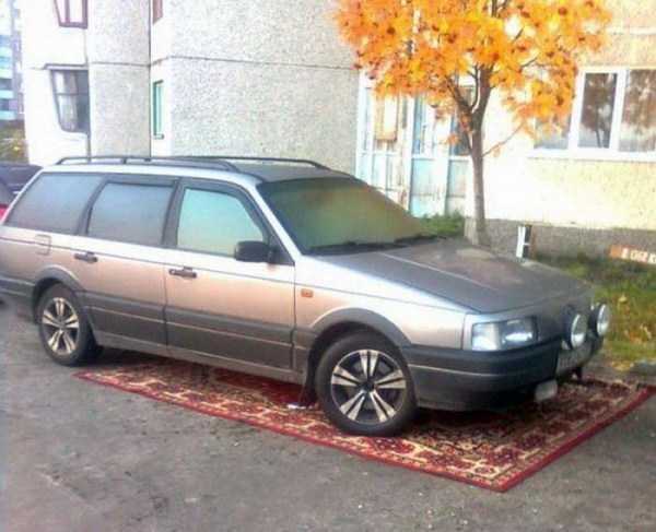 russians-love-carpets (10)