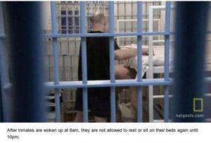 black-dolphin-prison (12)