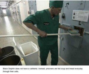 black-dolphin-prison (13)