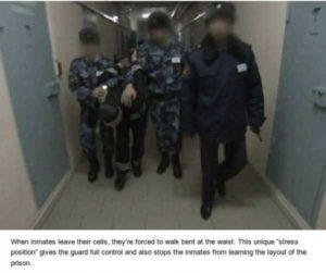 black-dolphin-prison (7)