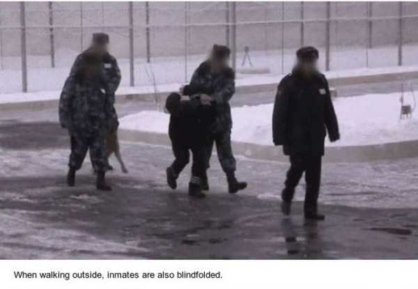 black-dolphin-prison (8)