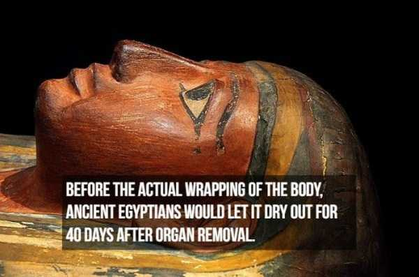 mummies-facts (10)
