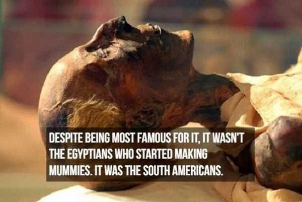 mummies-facts (12)