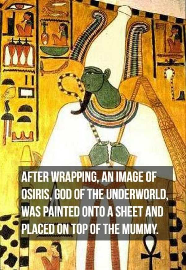 mummies-facts (13)