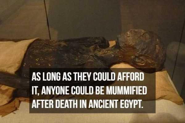 mummies-facts (17)