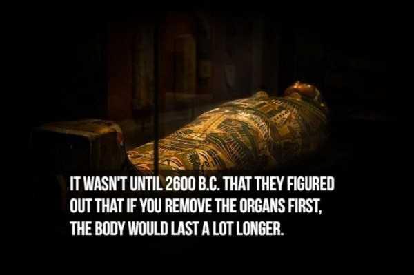 mummies-facts (2)