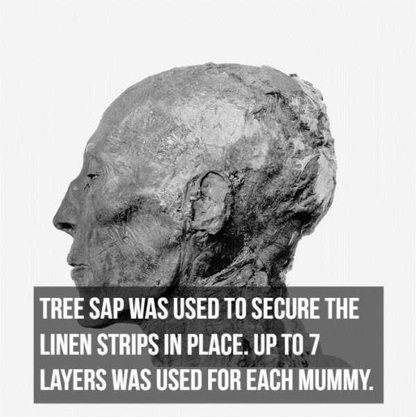 mummies-facts (3)