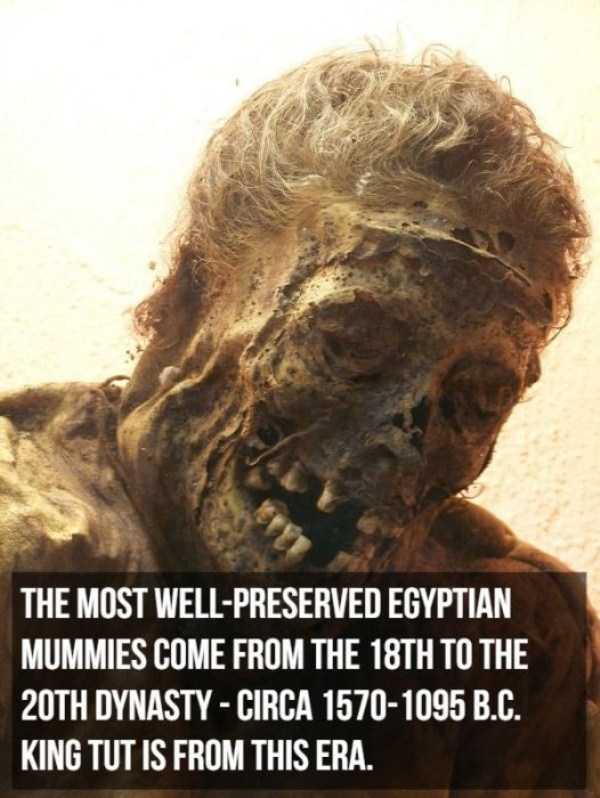 mummies-facts (4)