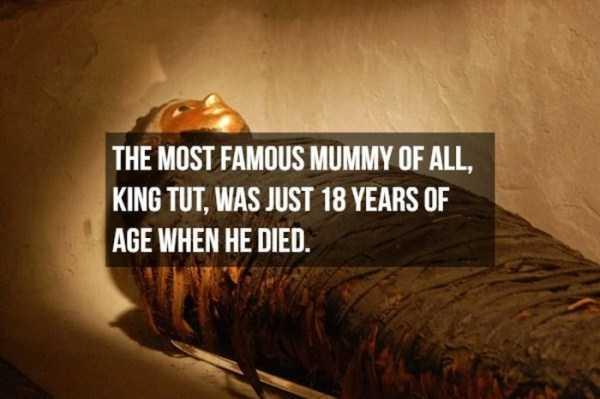mummies-facts (9)