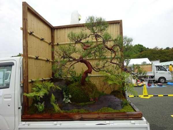 truck-garden (2)