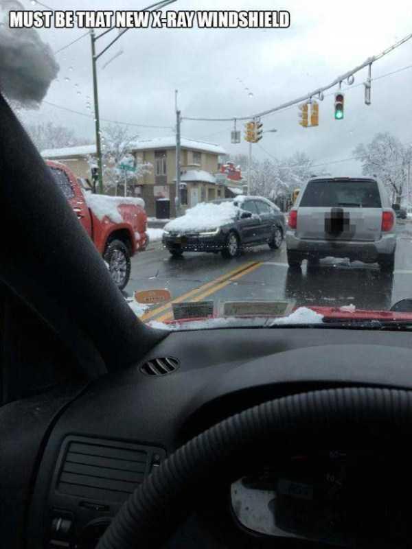 dumb-drivers (15)