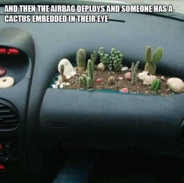 dumb-drivers (3)