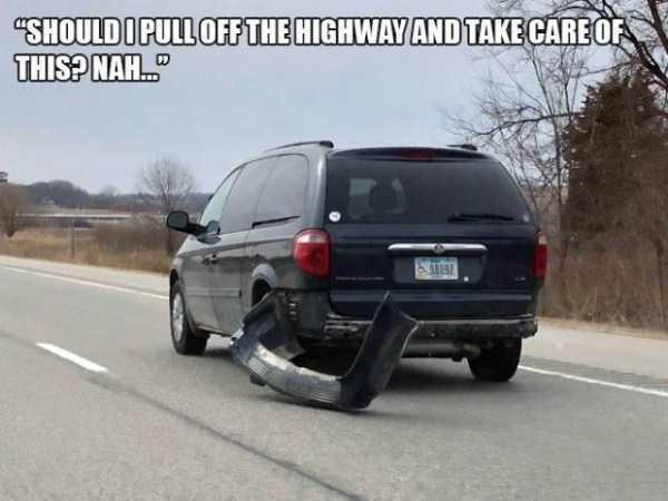 dumb-drivers (8)