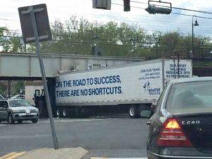 dumb-drivers (9)