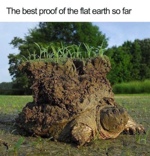 flat-earth-memes (27)