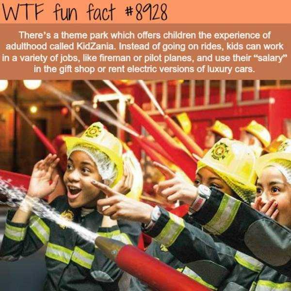 fun-facts (16)