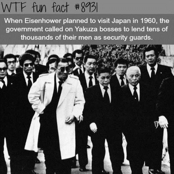 fun-facts (19)
