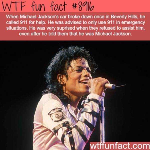 fun-facts (9)
