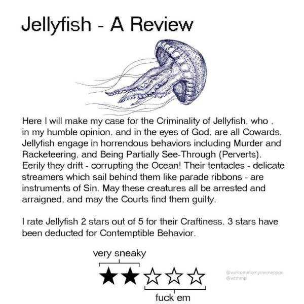funny-animal-reviews (10)