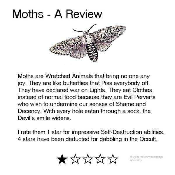 funny-animal-reviews (11)