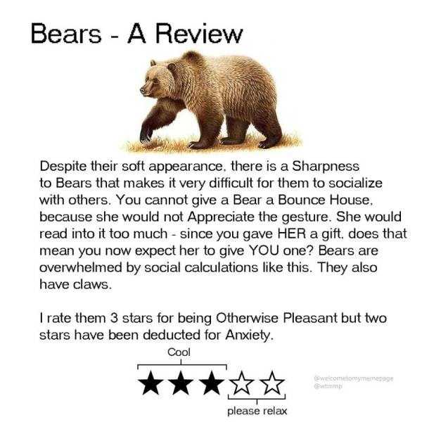 funny-animal-reviews (13)