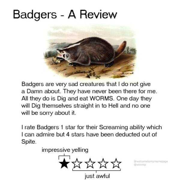 funny-animal-reviews (14)