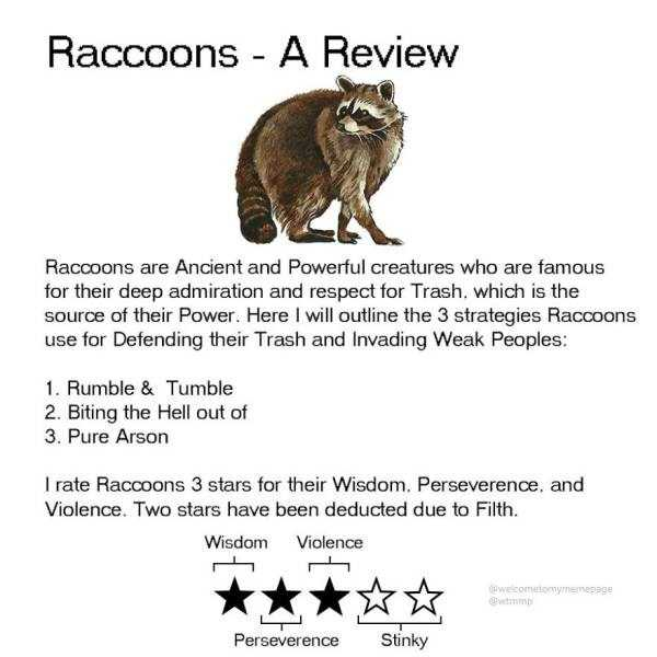 funny-animal-reviews (15)