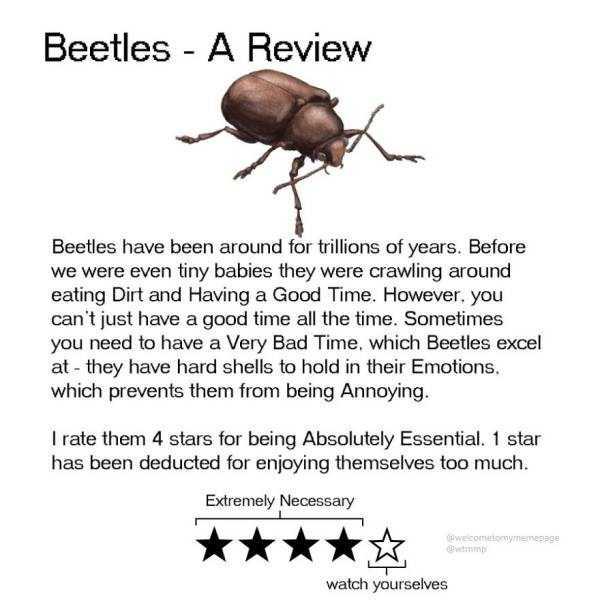 funny-animal-reviews (16)