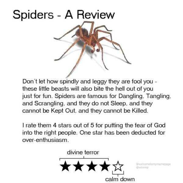 funny-animal-reviews (5)