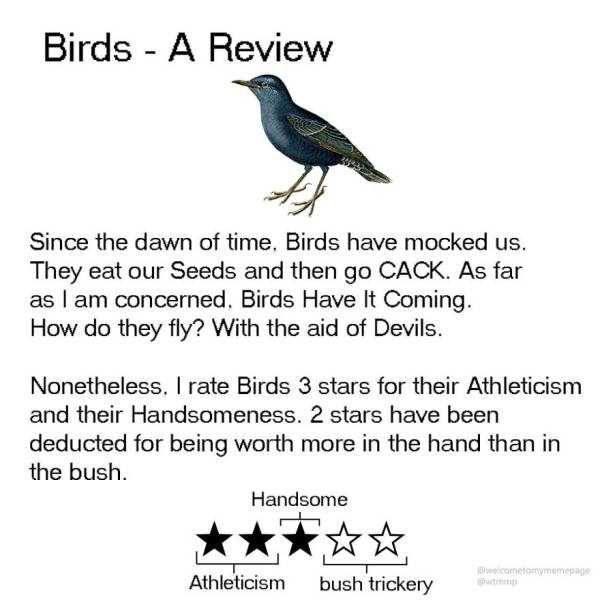 funny-animal-reviews (9)