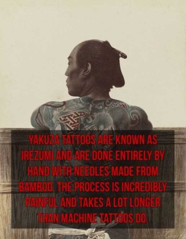 yakuza-facts (15)