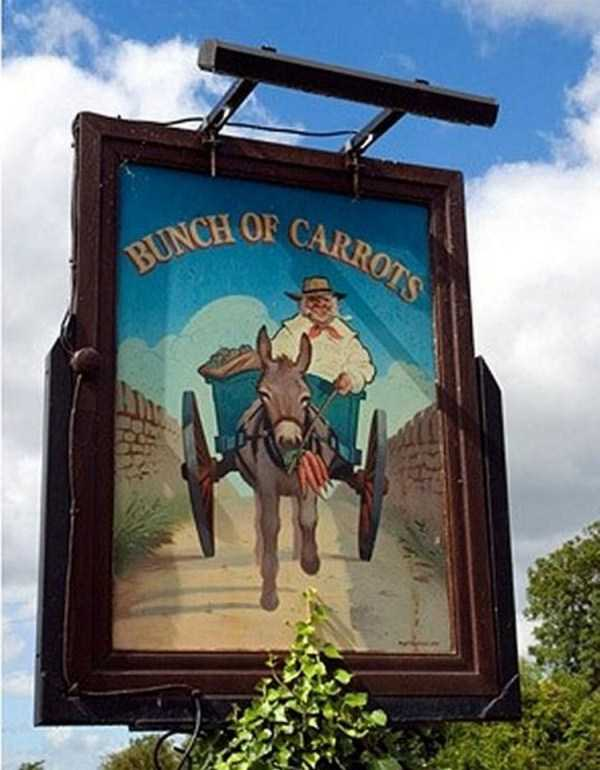 bizarre-uk-pub-names (17)