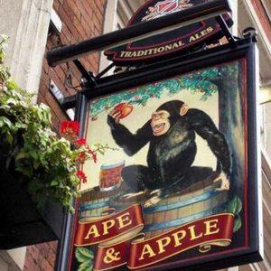 bizarre-uk-pub-names (21)