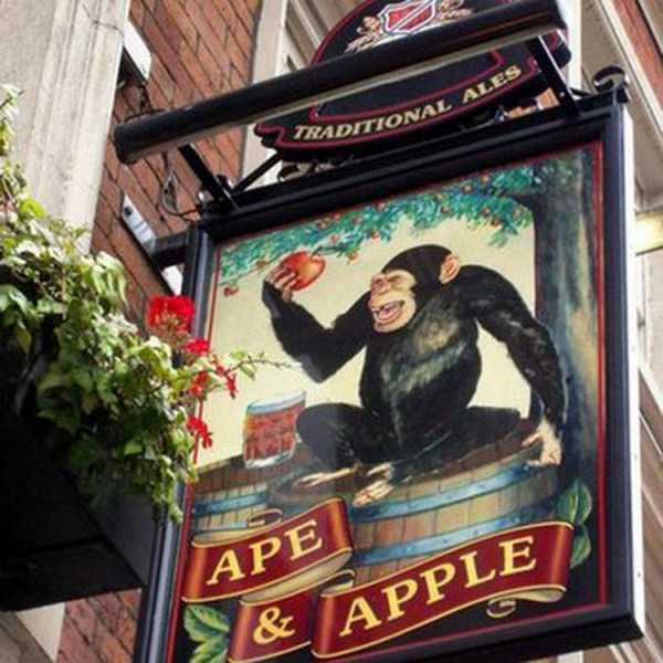 bizarre-uk-pub-names (21)