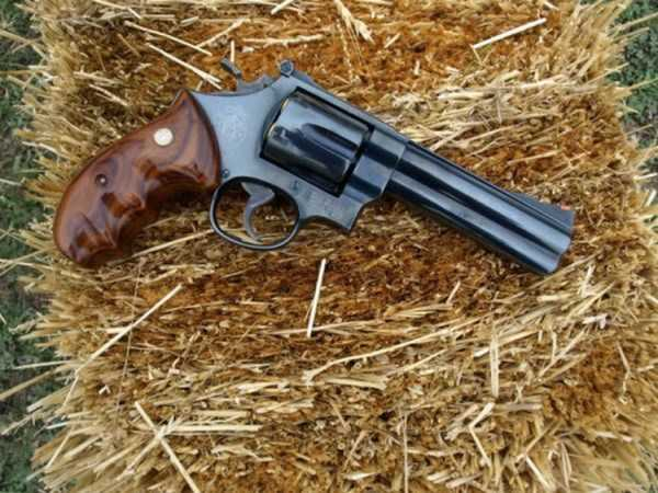 unique-custom-handguns (13)