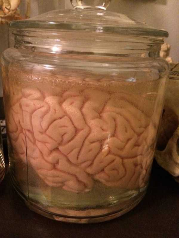 bizarre-things-in-jars (22)