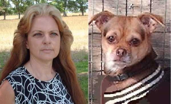 dogs-humans-doppelgängers (24)