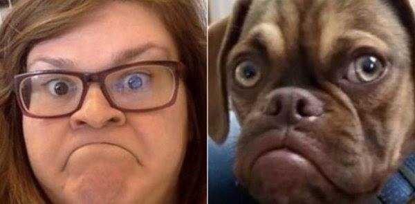 dogs-humans-doppelgängers (30)