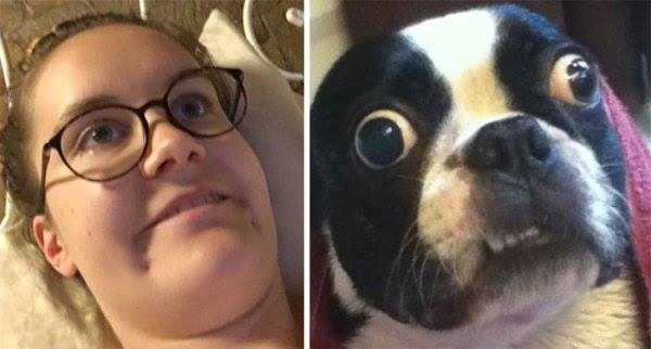 dogs-humans-doppelgängers (33)