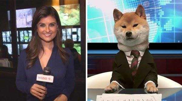 dogs-humans-doppelgängers (34)