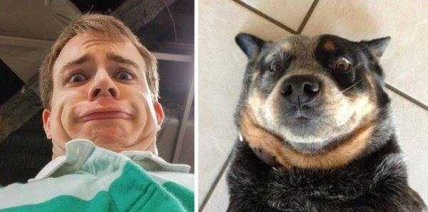 dogs-humans-doppelgängers (7)